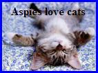 Aspies love cats